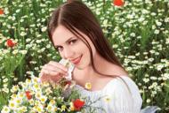 Cum te ajută plantele medicinale de vară să îţi menţii sănătatea