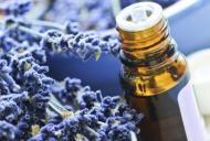 Cum să tratezi o înțepătură de insectă
