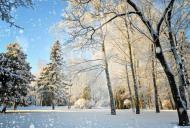 Cum va fi vremea în România până pe 15 ianuarie