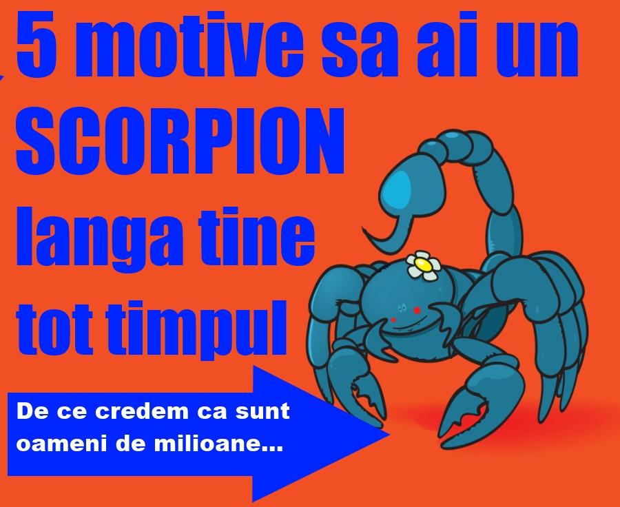 5 motive să ai un Scorpion lângă tine tot timpul