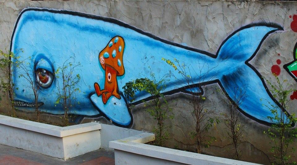 Ce jocuri sinucigașe se practică în Rusia. Balena Albastră nu e singurul!