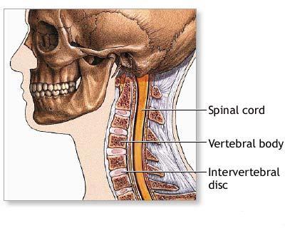 Que duele sobre la espalda más arriba riñones