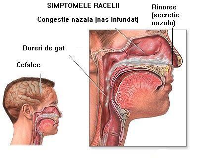 simptome insuficienta respiratorie