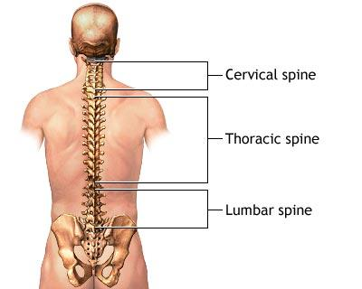 dureri caracteristice in hernia coloanei vertebrale lombare