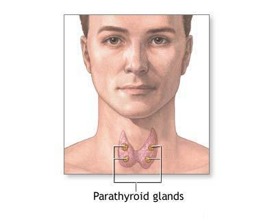 Glanda tiroida si preconceptia