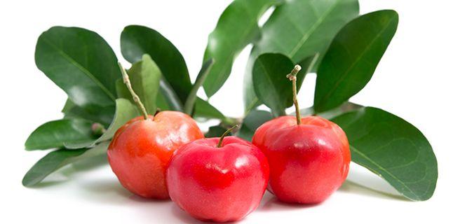 Vitamina C din fructul de Acerola – cel mai puternic antioxidant