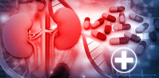 Sfaturi pentru sanatatea rinichilor
