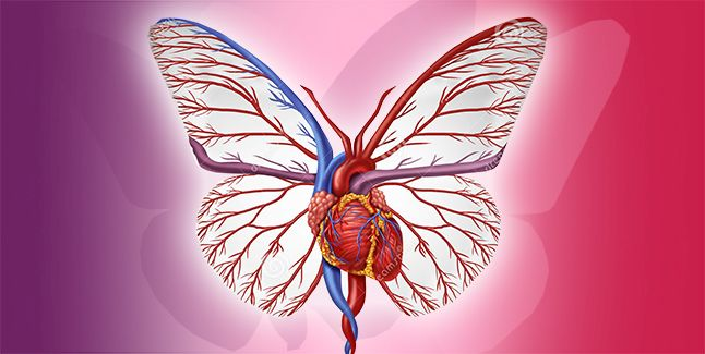 Resveratrol: Sursa naturala a longevitatii