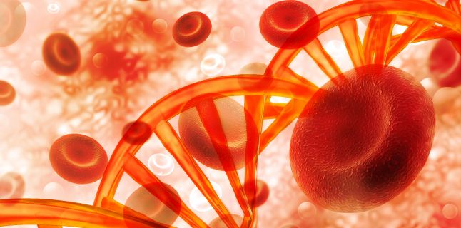 Ce este si cum se manifesta anemia aplastica?