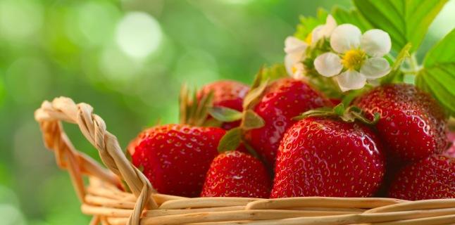 căpșunile de căpșuni ajută la arderea grăsimilor