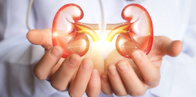 Chisturile la rinichi - cand devin periculoase?
