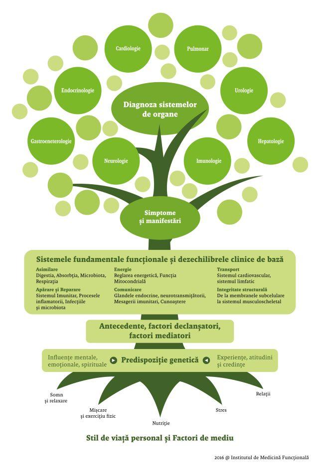 Medicina functionala si integrativa, aliatul unui stil de viata echilibrat