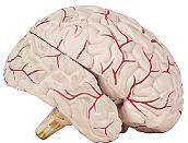 Neurinomul nervului acustic