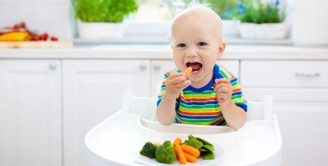 Dieta vegana in randul copiilor