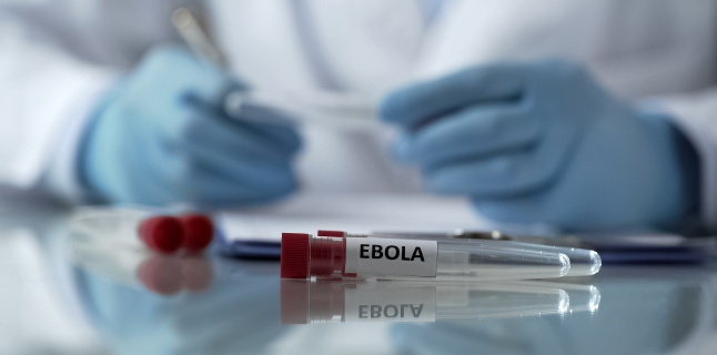 Ebola - cum se poate impiedica raspandirea bolii?