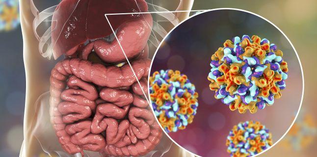 hepatita b provoacă pierderea în greutate