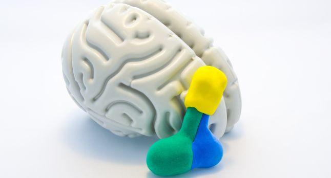 Influenta schimbarilor hormonale asupra creierului femeilor