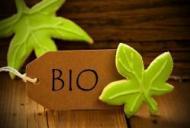 Informatii utile despre alimentele bio, suplimente nutritive si produse bio fara gluten
