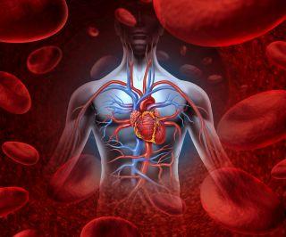 6 motive care fac inima sa-ti sara din piept