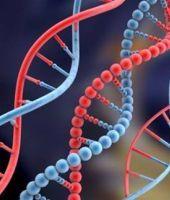 Mostenirea genetica