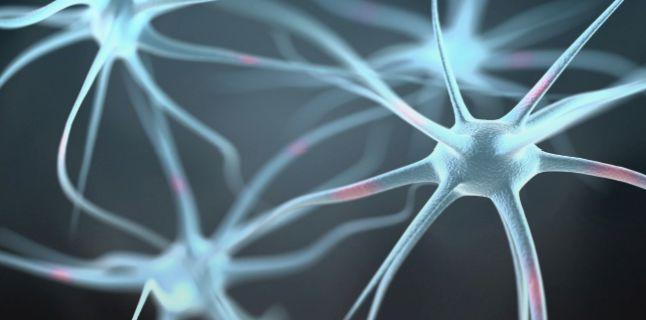 Cum ne mentinem creierul sanatos?