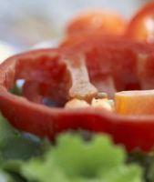Pro si contra vegetarianismului