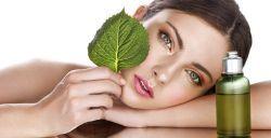 Produsele BIO incetinesc degradarea pielii, hranind-o in profunzime cu ingrediente naturale de cea mai buna calitate