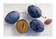 Prunele - beneficii si retete sanatoase