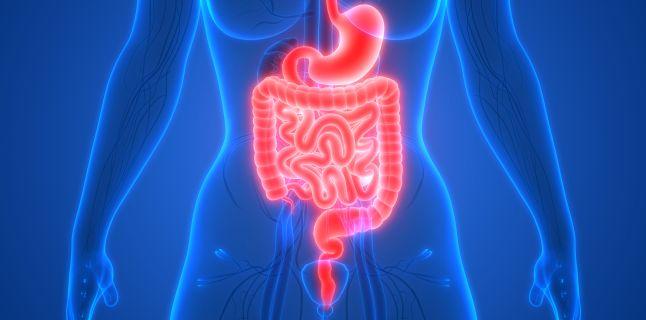 Medicina functionala si integrativa, aliat in prevenirea si tratarea bolilor digestive
