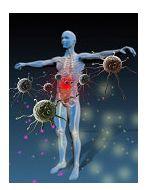 Ce se intampla cand sistemul imunitar ataca organismul