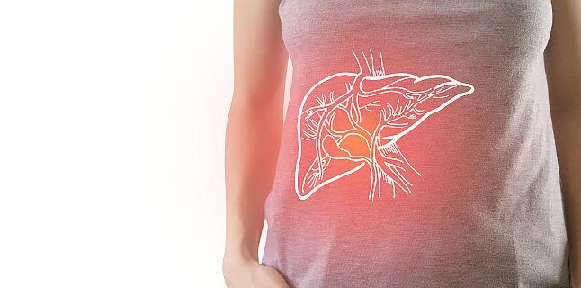 Sustine functionalitatea ficatului