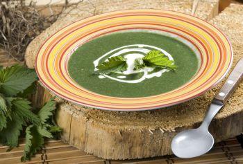 Supa de urzici cu usturoi
