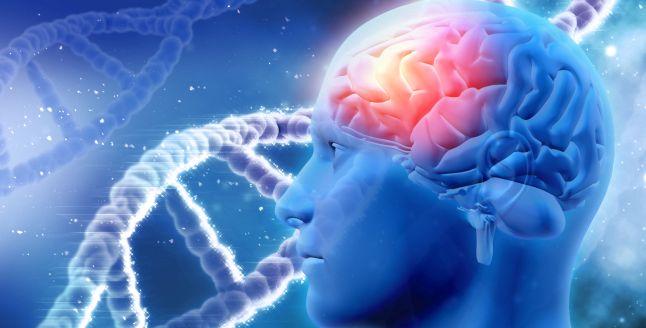 Supliment naturist pentru Alzheimer, dementa si alte afectiuni cerebrale