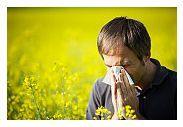 Tratamentul alergiilor sezoniere