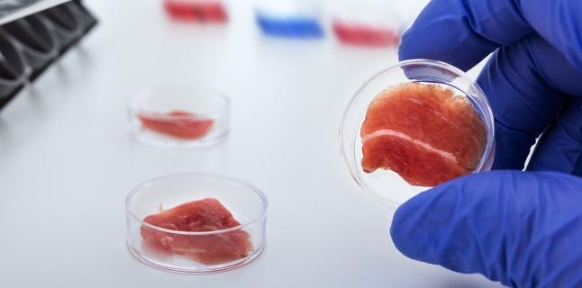 Riscurile ascunse ale consumului de carne de porc