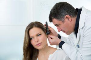 Urechea - anatomie si fiziologie