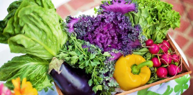 Ce sunt fibrele solubile si de ce sunt recomandate in constipatie?