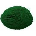 Chlorella (pudra organica) - 250g
